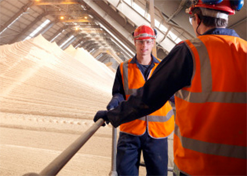 Photo of workers in a facility showcasing Hapman's mineral processing material type capabilities